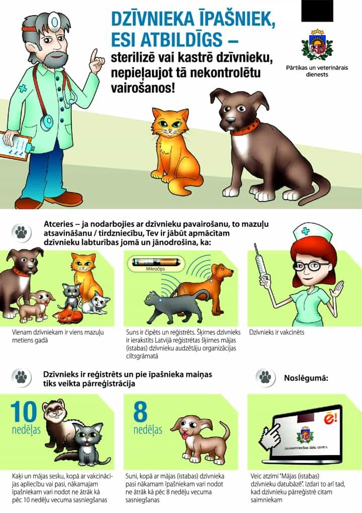 Зачем стерилизовать и чипировать домашнее животное - кота, собаку и других